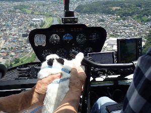 8107 - (株)キムラタン 鴨は  南の空に飛んで行ったか❣️(^◇^)🐙