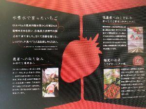 6788 - (株)日本トリム 安芸こまちって知っていますか? トリムの水素水で育てたイチゴ。 めっちゃ甘くて大きいかった。大好き!