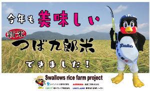 6897 - ツインバード工業(株) おいしいお米を販売します  東京ヤクルトスワローズ https://www.yakult-swall