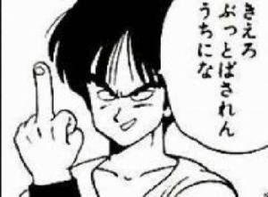 998407 - 日経平均株価 ヤムチャ「今夜のダウは俺に任せとけ」