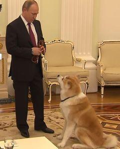 998407 - 日経平均株価 プーチンさん、日本語できるのかも 秋田犬と話ししてたで