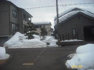 初心者の部屋 ガンさん・ひまわりさん・こんにちわ 此方は、予報に反して幸いにも日が差しています。 もう。3月かな?