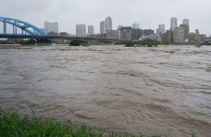 998407 - 日経平均株価 長江の洪水、ではなくて多摩川   危機一髪だった