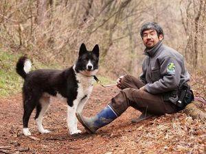 998407 - 日経平均株価 特定非営利活動法人 ピッキオ Picchio クマの保護管理が仕事です カレリアンベアドッグの繁殖も