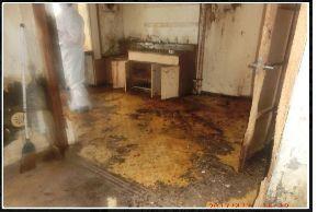 猫の糞尿被害者の会 > 猫拉致捕獲人の猫虐待専用部屋捕獲脳乱異常者の住居内の模様