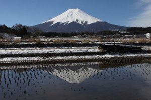 /^д^\富士山好きな人の部屋 2月の雪が多いときには吉田口の馬返しまで車で行けたのですが、3月になり雪が融けてきたら逆に轍が深くな