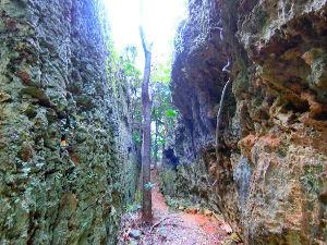 沖縄・石垣・八重山諸島へ バリバリ岩   地殻変動を実感できる不思議スポット 地殻変動によって真っ二つに裂けた大きな岩山。南大