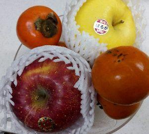 少しの時間でも話ができれば..... りんごちゃん、こんばんはヽ(=´▽`=)ノ 今日は美味しそうなりんごと柿を 頂きました。