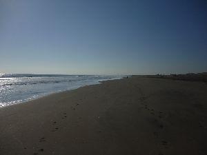 どこか行きたい・・・・ ただいま~  昨日は快晴でした、そして今日も午前中は素晴らし青空でした。  12時から急に曇りになり