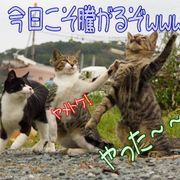 オンキヨー株主たちの闇スレpart3