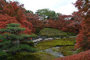 行って来たよ~♪ こんにちゎ!    写真は 「どうだん亭」   おいらが香嵐渓に行くときは 下道オンリーです。 瀬戸