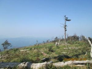 九州 大分発 山歩きしています。 良い天気ですこんにちは 御嶽山の噴火は大変ですね 災害に会われた方の冥福を祈ります。 昨日は英彦山へ