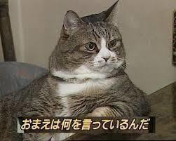 7022 - サノヤスホールディングス(株) > じーちゃん、タメ世代でしょ。   それはないw