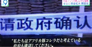 1380 - (株)秋川牧園 アフリカ豚コレラ  中国で感染拡大  輸入肉は食べたくないですよね🤮