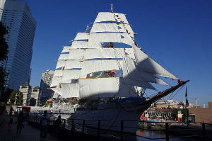 おじさん おばさん 大集合!!!! 海王丸綺麗ですね 2年ほど前に 日本丸でしたが、横浜で船内見物しました 帆を上げて見せていました