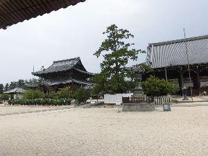 傘寿の坂を越えて・・・ お早う。 高田本山が国宝指定され嬉しく一身田から 松阪へ,へんば餅売ってなく残念。 同期きんいちさん