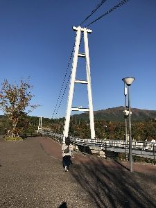 山口県西部の出会い~30~40代の方 お疲れさまです 昨日から耶馬渓〜九酔渓  の紅葉狩へ 行って来ましたよ 発色は余り良くなかったですが