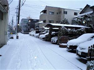 私流の自然体写真 夕べも雪が降ったようです。名古屋では珍しい雪化粧を写真に撮りました。 通勤時間なのに誰も歩いていませ