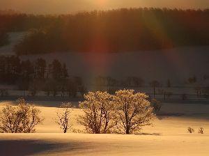 私流の自然体写真 そちらも寒いんですね。 体調はいかがですか?  昨日は放射冷却の朝でした。 こちらは自然にさらされて