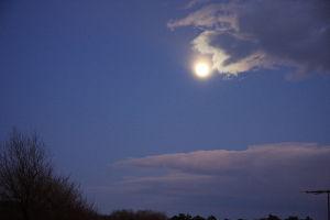 私流の自然体写真 月の写真がいいかも知れない