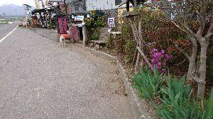 60代の出逢い美味しいcoffee飲みながら語りませんか 三島池のコトちゃん元気かな?店の周りは桜が終わる 今日は寒くてストーブ燃やしてます。お客さん来ないね