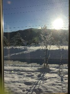 ログハウス生活 今年は雪の量が昨年の半分以下です?スキー場が可哀想ですね〜