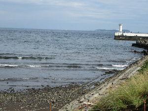 伊豆けんの家庭菜園  航跡の彼方に小島海の家  お粗末でした。