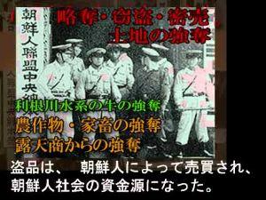 韓国人は正しい歴史教育をやり直して 在日韓国・朝鮮人の本心    詳しくは下記を参照 http://gofar.skr.jp/obo/a