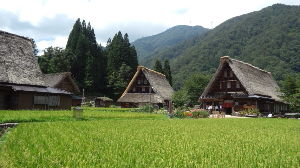 愛知県西三河より、たまにのんびりご一緒出来る方はいらっしゃいませんか? みなさん、こんにちは。  かなり、ご無沙汰してますが・・・・走ってますよ^c^  お盆過ぎの休日に、