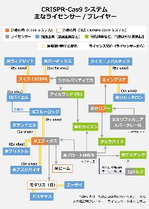 4883 - (株)モダリス モダリスGOGO----!!!!!