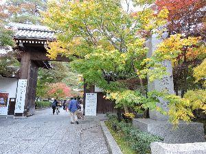 昔、昔、旅行をしました。そんな思い出ですよ。 これは、永観堂(禅林寺)かな。  禅林寺(ぜんりんじ)は、京都市左京区永観堂町にある浄土宗西山禅林寺