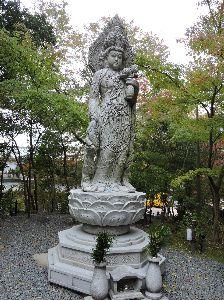 昔、昔、旅行をしました。そんな思い出ですよ。 これは、永観堂(禅林寺)かな。  良い顔しているね。。。   .