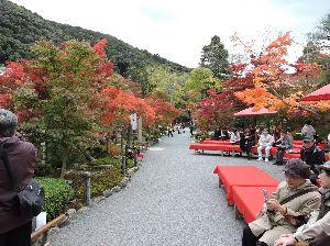 昔、昔、旅行をしました。そんな思い出ですよ。 これは、永観堂(禅林寺)かな。  おく山の 岩がき紅葉 散りぬべし 照る日の光 見る時なくて   「
