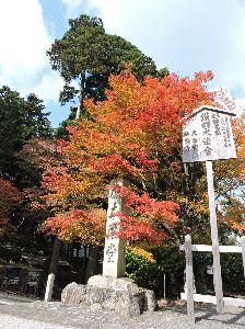 昔、昔、旅行をしました。そんな思い出ですよ。 これは、比叡山延暦寺かな。  百人一首で有名な慈円は、比叡山について「世の中に山てふ山は多かれど、山