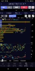 3974 - (株)ティビィシィ・スキヤツト 1600帯の出来高、ここにしてみればヤバいな
