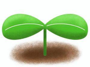 4485 - (株)JTOWER 兵どもの夢の後・・・てかっ  でもなんとなぁーく新緑の香りがして来たような 来週辺りから様子見て監視