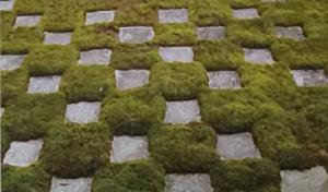 9602 - 東宝(株) 京都の東福寺の庭園が「鬼滅の刃」の市松模様に似ていると話題になっている‼️  鬼滅の刃ファンは是非と