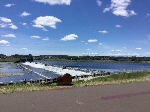 遊びながら正義の山を探してみよう^^ > > 緑のヘルシーロード^^ >  > 今日は多摩川でも雲が素敵でした^^