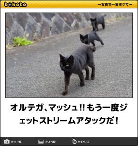 3071 - (株)ストリーム ほああwww(爆)