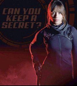 炯々と紅蓮 MARVEL 「 Agent of Shield 」  なんとなんと、ゴーストライダー登場\(^o^