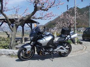 ライコ番外編ツーリング 4月16日 きょうは、ひとりで長野あんずの郷まで行って来ました。 本庄IC 坂城IC あんずの郷 R