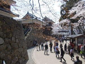 ライコ番外編ツーリング 追加写真  上田城祉 桜まつり サクラ満開でした。