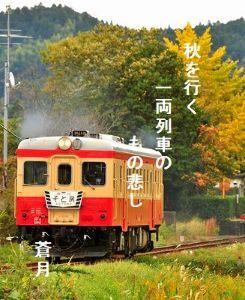 あい子の部屋     秋を行く       一両列車の          もの悲し              蒼