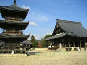 なんとなく 想うこと んじゃ、岡山ネタを投下。  岡山には西大寺という寺があります。 普段は変哲もない普通の寺ですが。