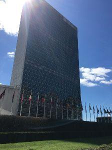 3053 - (株)ペッパーフードサービス  国連ビル