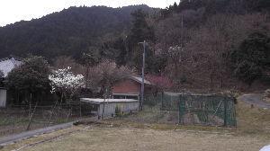 初心者です メル友募集   キヨさんおはようござます  昨夜はうつらうつらしてて 気が付かなかったんですが 秋田県地方にかな