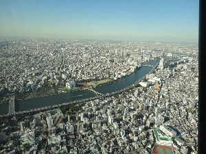 お散歩の途中で立ち話(*^^*) 快晴でしたのに富士山が見えませんでした。