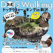 5/25駒沢公園でドッグウォーキング&里親譲渡会開催!!